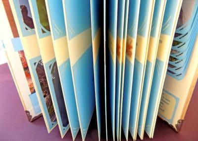 Албум в кремаво и нежно синьо
